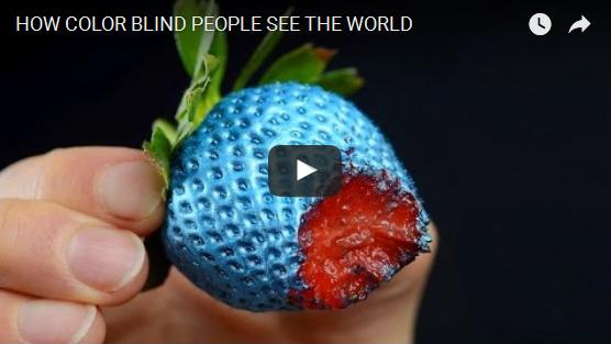 How color blind people see the world?