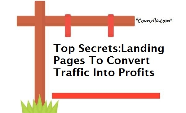 Landing Pages To Convert Traffic Into Profits