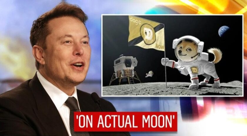 Buy and trade doge coin with Elon